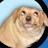 Matthew Clark avatar image