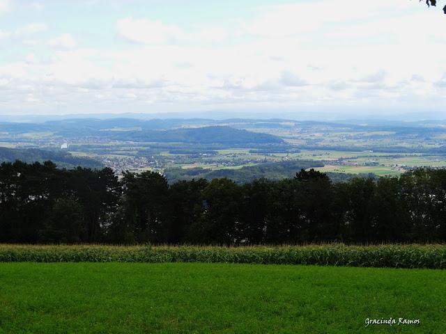 passeando - Passeando pela Suíça - 2012 - Página 14 DSC05142