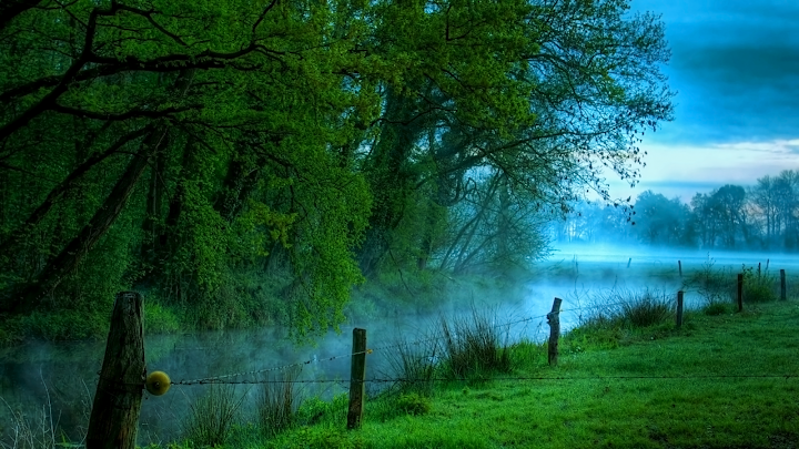 Spring Fog and Field wallpaper