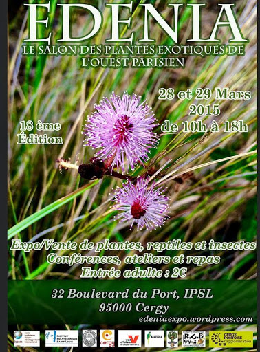 EDENIA 2015 le salon des plantes tropicales à Cergy Pontoise 28/29 Mars 2015 Edenia%25202015