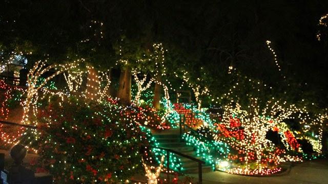 Christmas Lights In Gilbert Az