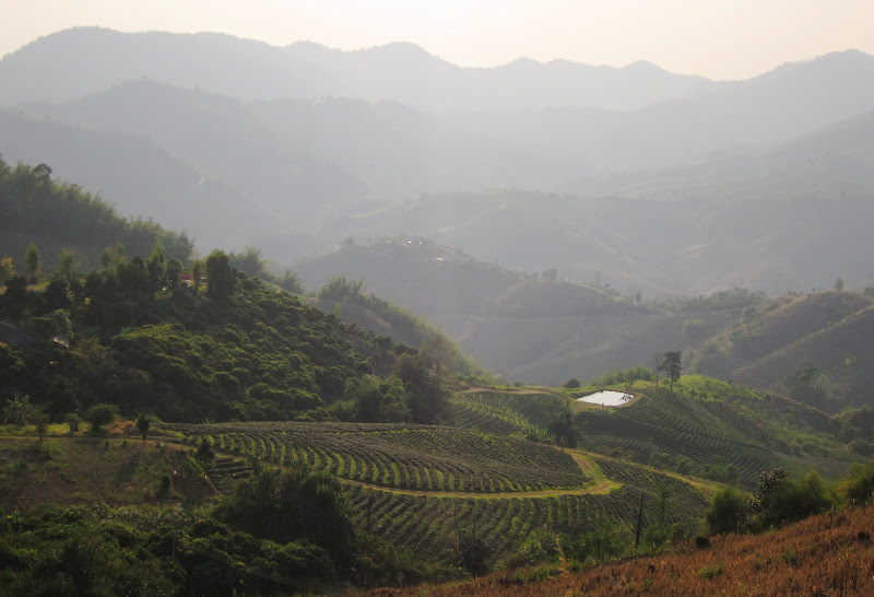 Sceneries in Golden Triangle region of Thailand