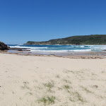 Looking out from Snapper Point beach (247810)