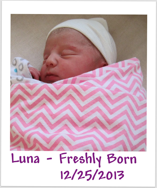 Happy 1st Birthday from Spirit of Life to Luna