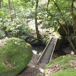 Narrow footbridge (153607)