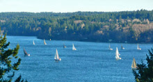 sailing up the sound towards Vashon
