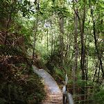 Federal Pass track abot Lila Falls (93001)