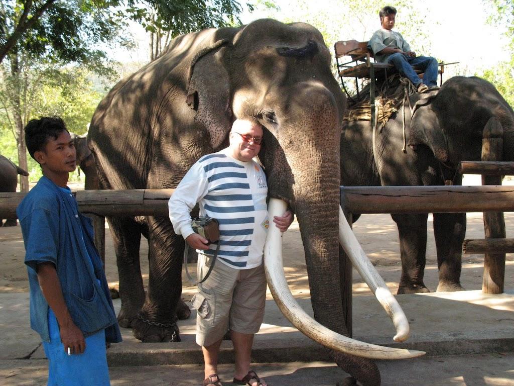 Слон Тайланд