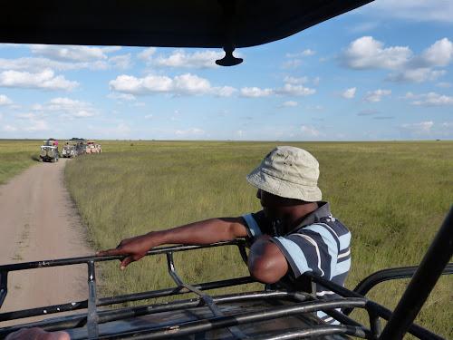 Bekari observing the slow drama unfolding