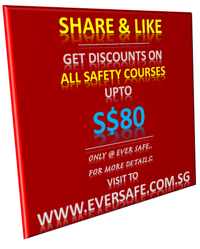 eversafe Discounts