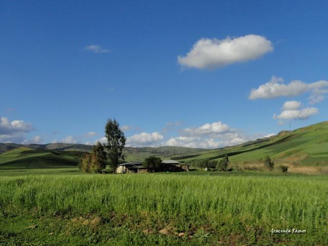 marrocos - Marrocos 2012 - O regresso! - Página 8 DSC07401a