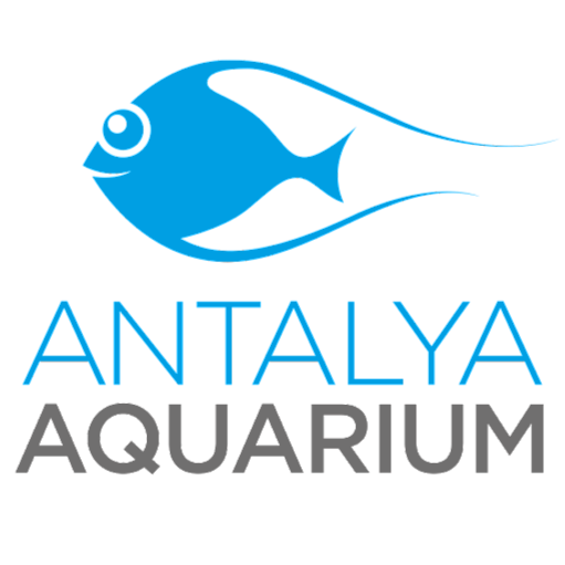 Antalya Aquarium  Google+ hayran sayfası Profil Fotoğrafı