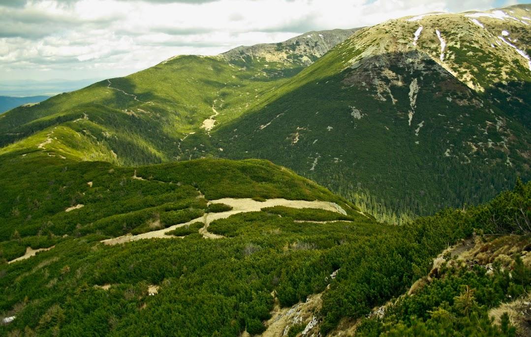 Siwy Wierch Palenica Jałowiecka szlak