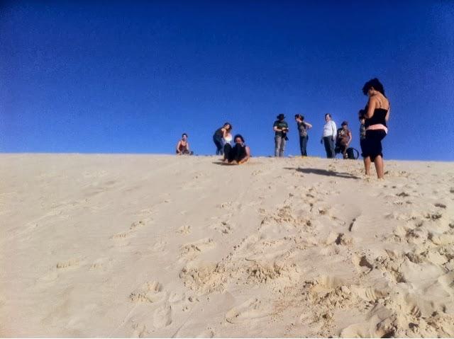 Kangaroo Island Backpacker Tours