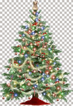 christmastree_mb.jpg