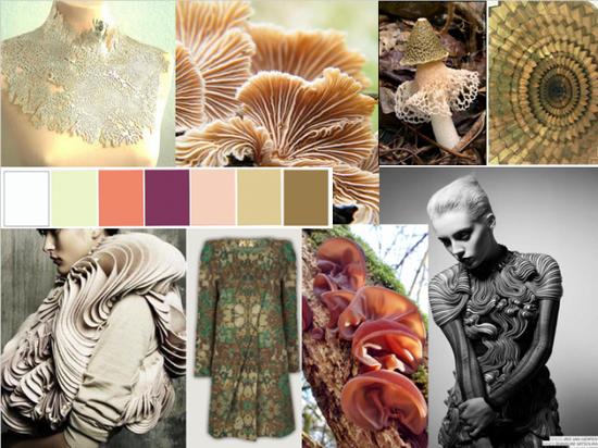 Fungi fashion inspiration mood board