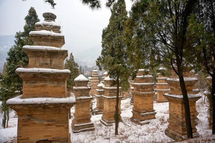 Bosque de pagodas