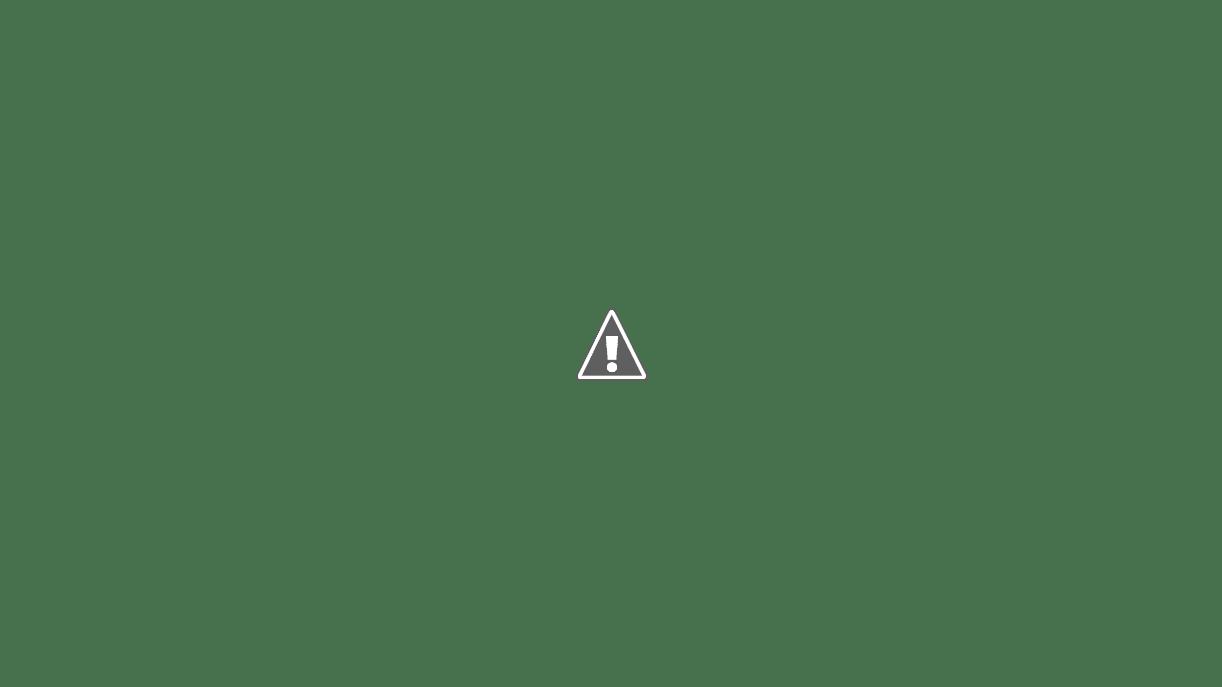 Izumi Restaurant Menu