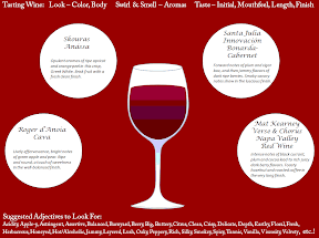 Free Printable- Wine Tasting Placemat to track your wines when having a wine flight