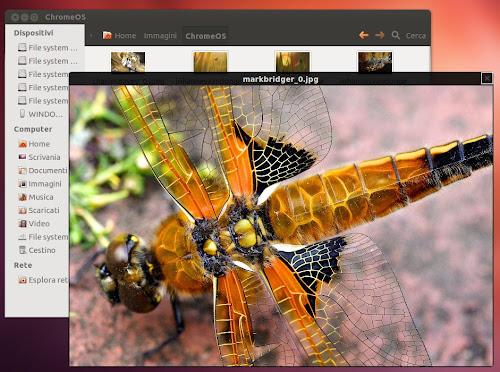 Gnome Sushi 0.4.1 su Ubuntu 12.04