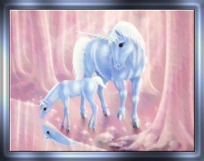 unicorn%252520%25252816%252529.jpg