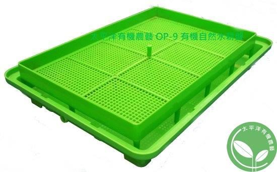 有機芽菜水耕盤 / 有機貓草水耕盤 / 有機小麥草水耕盤