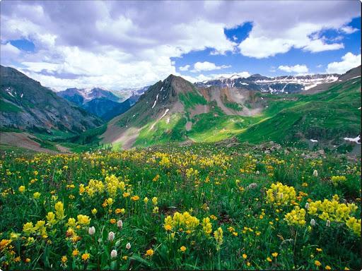 Yankee Boy Basin, Ouray, Colorado.jpg