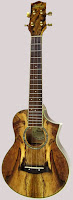 Ibanez Spalted Mango Cutaway Acoustic Concert (Alto)