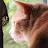 Michel Gaudet avatar image