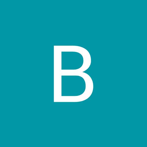 BRUNO BOTAS avatar