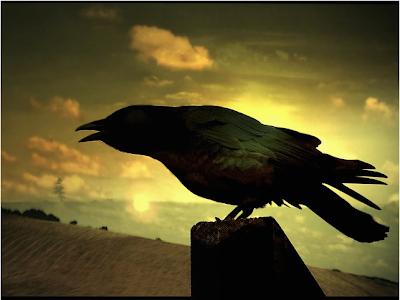 Inconsistencia en masa: criando cuervos