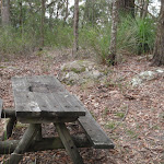 Old Picnic Table (228562)
