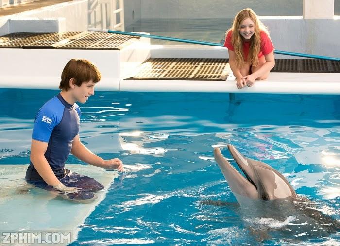 Ảnh trong phim Câu Chuyện Cá Heo 2 - Dolphin Tale 2 2