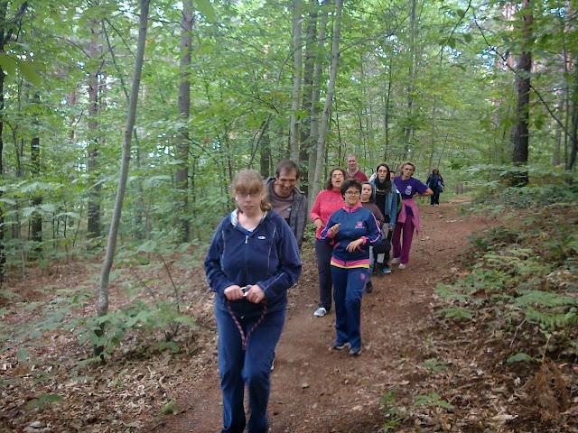 ruta por el paraje de los pinos