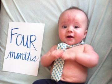 Dear Fischer (4 months)