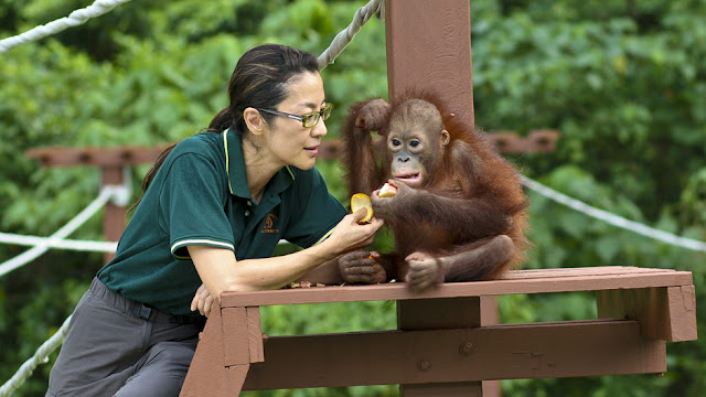 Michelle Yeoh and an orangutan 2