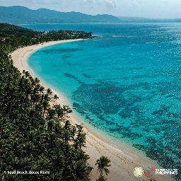 Animal Salvation