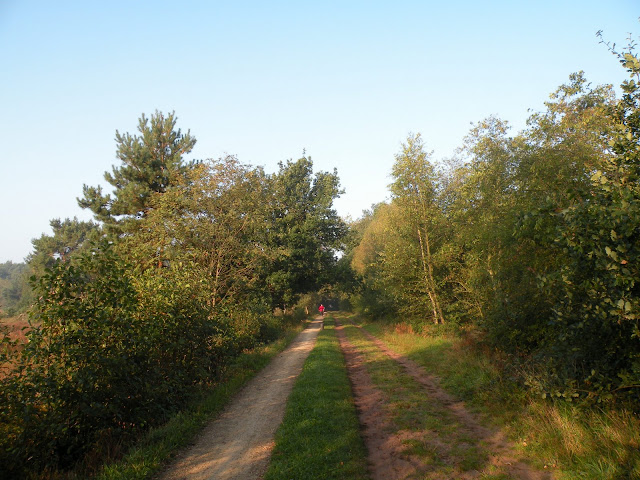 Marche Kennedy (80km) de Haaksbergen(NL): 16-17/09/2011 DSCN2862