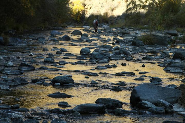 Fly-fishing in a stream 80-20 rule or 80/20 rule?