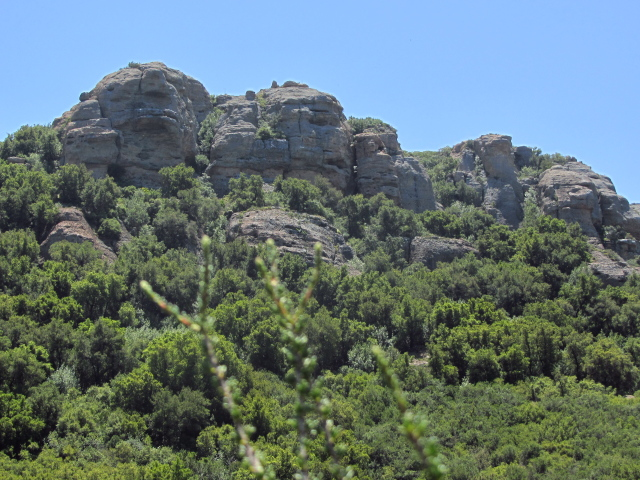 a large rock along the trail