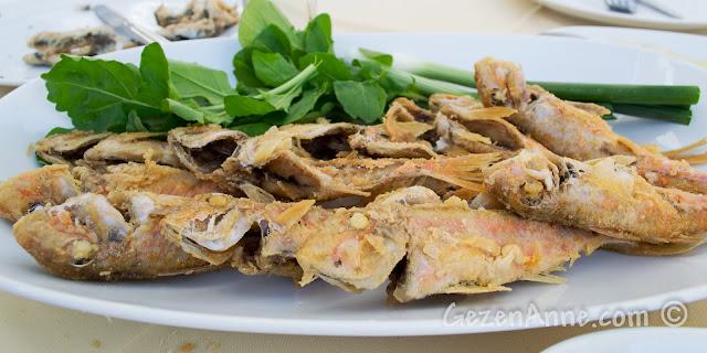 Ayvalık'taki Deniz Kestanesi restoranında tekir