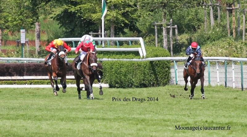 Photos Auteuil 8-06-2014  IMG_1803
