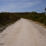 The Basin Track across the plateau (29591)