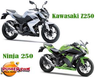 Pebedaan Kawasaki Z250 dengan Ninja 250 - pusber.com