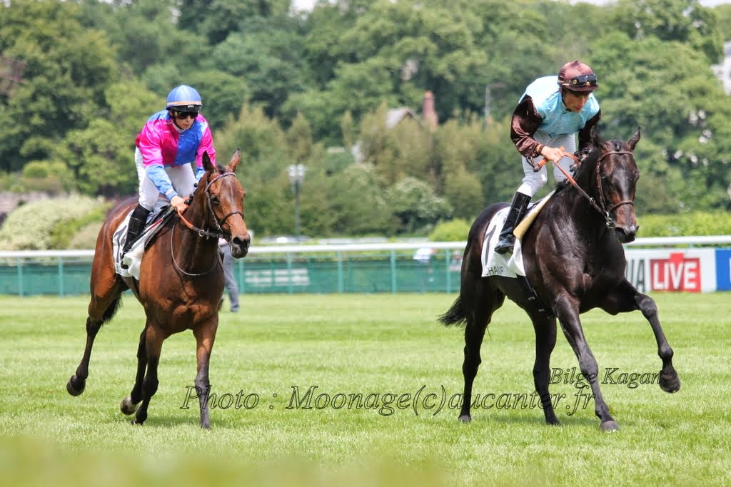 Photos Longchamp 25-05-2014 IMG_1181