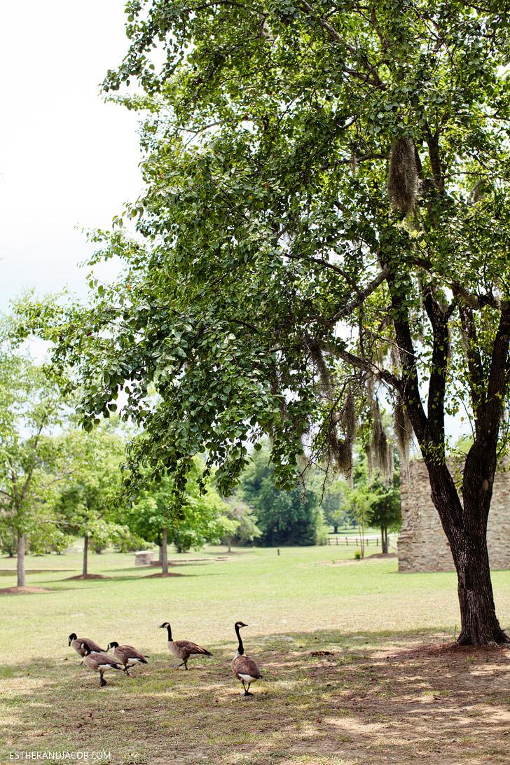 Blount Cultural Park | State of Alabama.