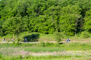 Sakarya Poyrazlar Gölü'nde bisiklet kullananlar