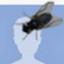 https://lh6.googleusercontent.com/-b95_7K5S99s/AAAAAAAAAAI/AAAAAAAAACY/ieziNqJ-qZg/photo.jpg?sz=64