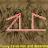 I. Wyrd avatar image