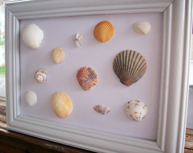 seashell frame art shell